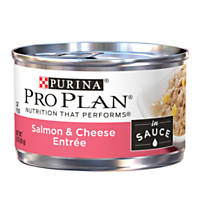 Pro Plan Savor Adult Canned Cat Food in Sauce, Salmon & Cheese