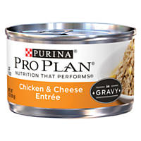 Pro Plan Savor Adult Canned Cat Food in Gravy, Chicken & Cheese