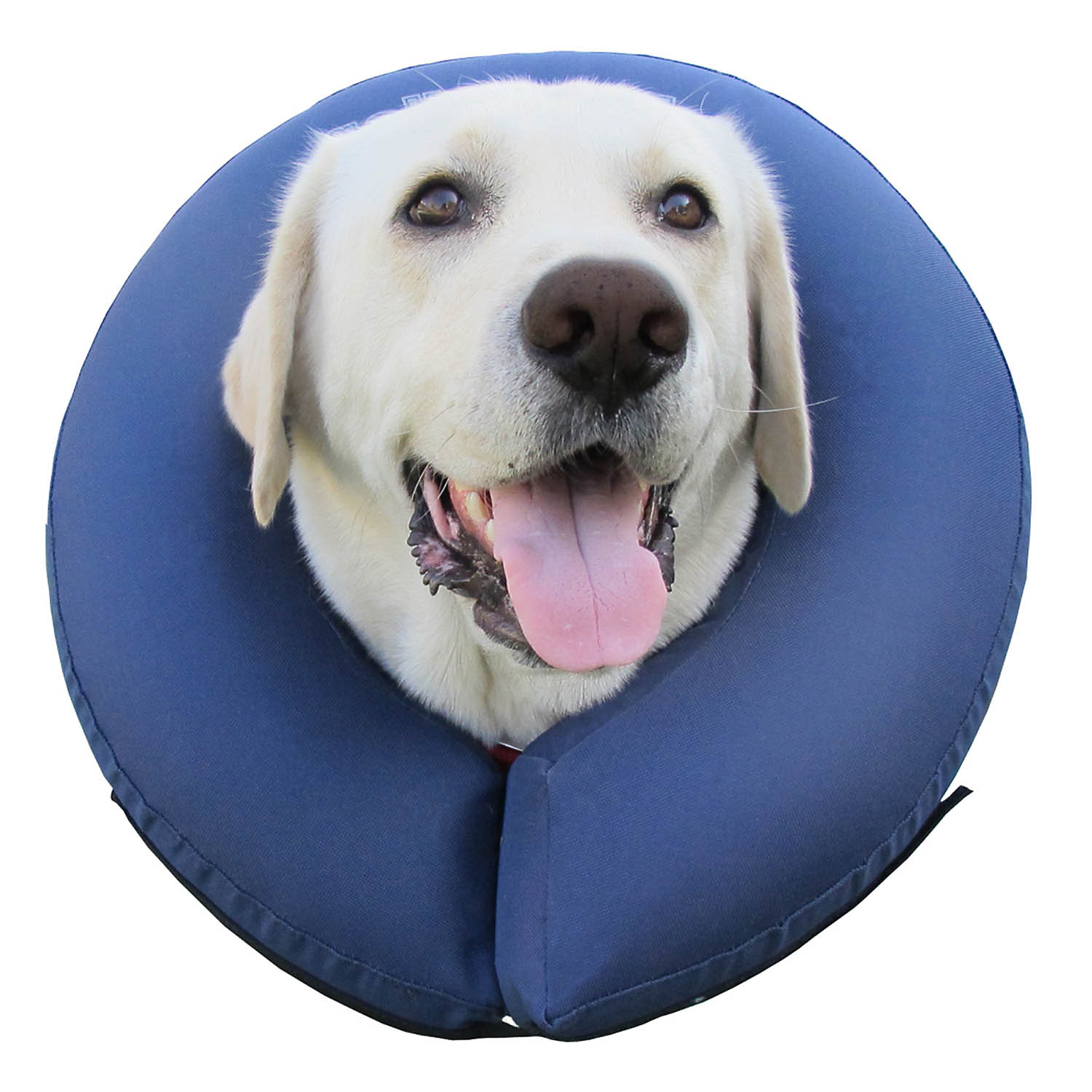 ProCollar Premium Inflatable Protective Collar, Size: Extra Large, Color: Blue