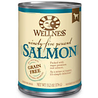 Wellness 95% Salmon Adult Canned Dog Food