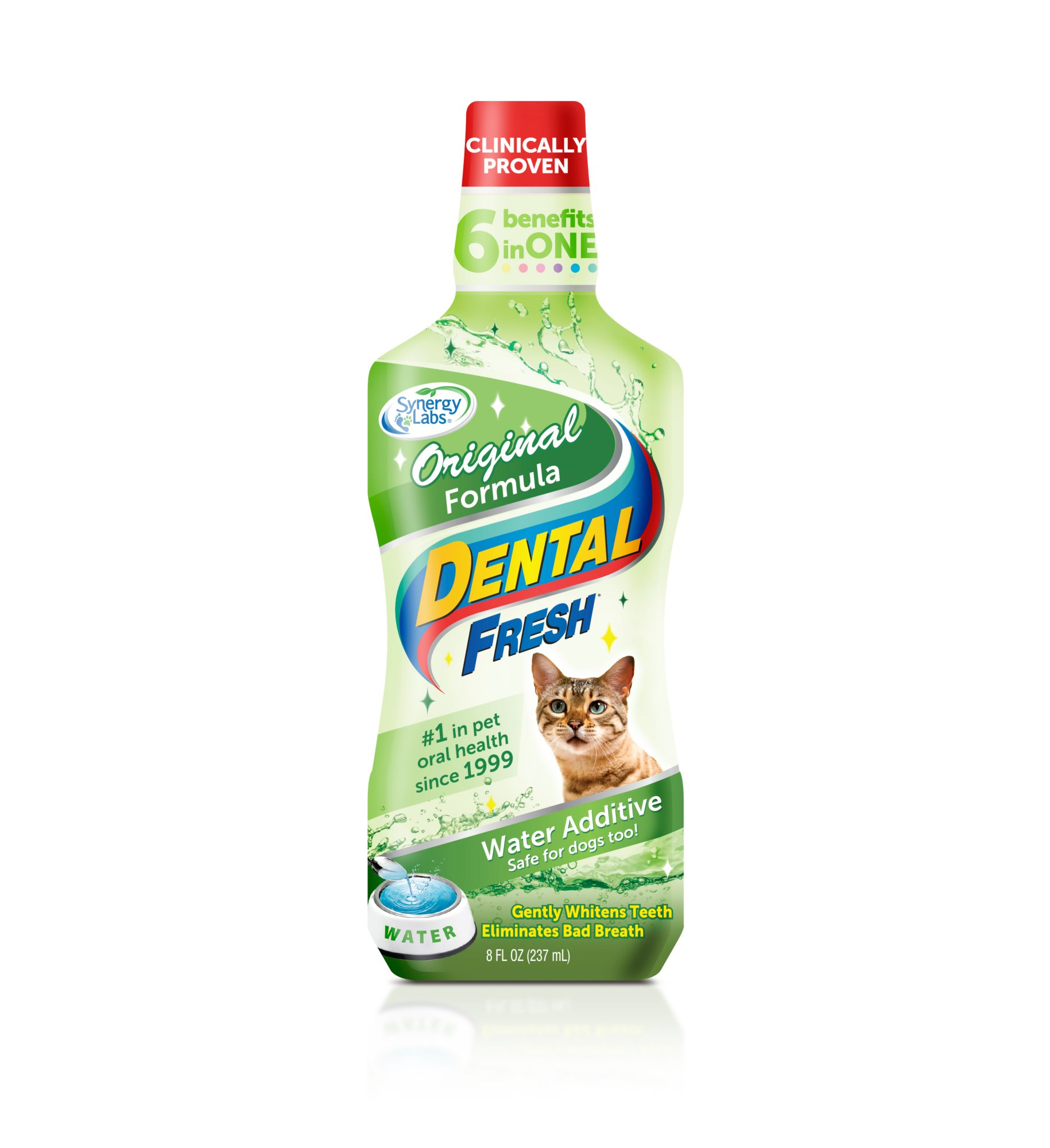 Dental Fresh for Cats
