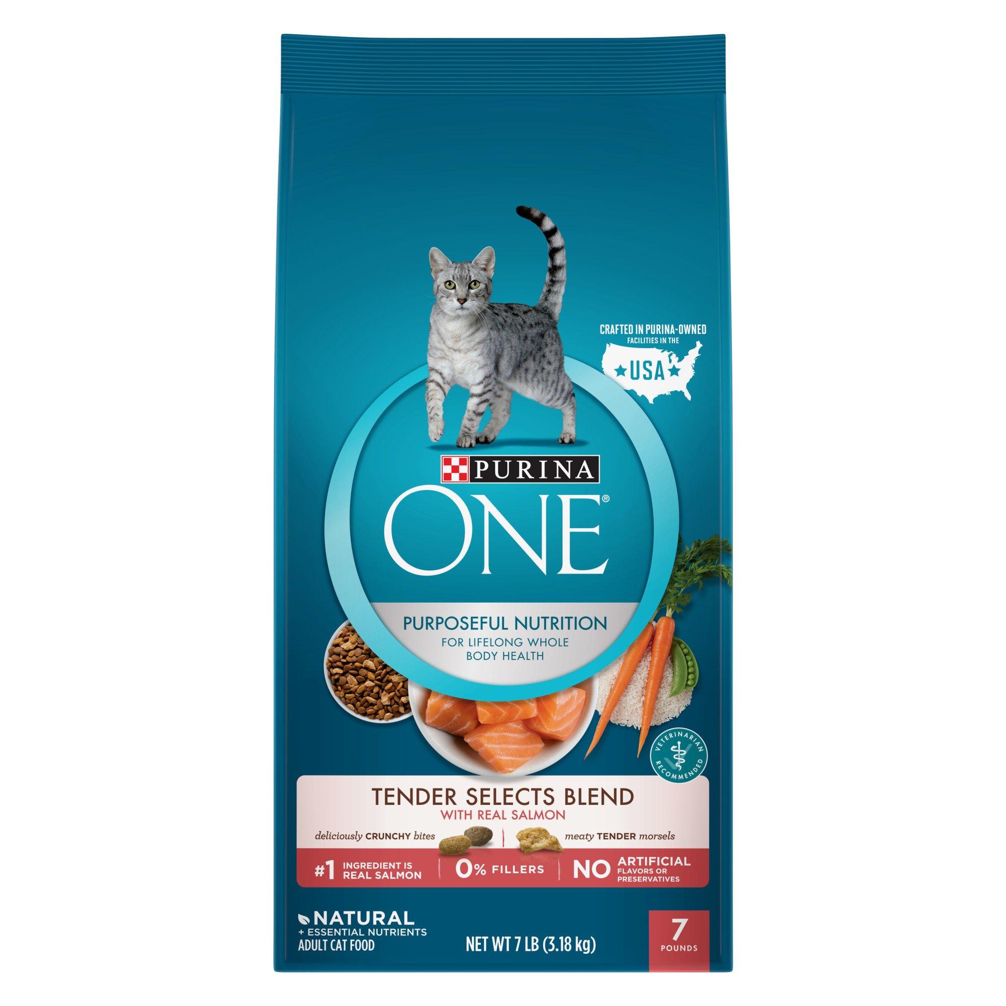 Purina ONE Salmon & Tuna Flavor Cat Food