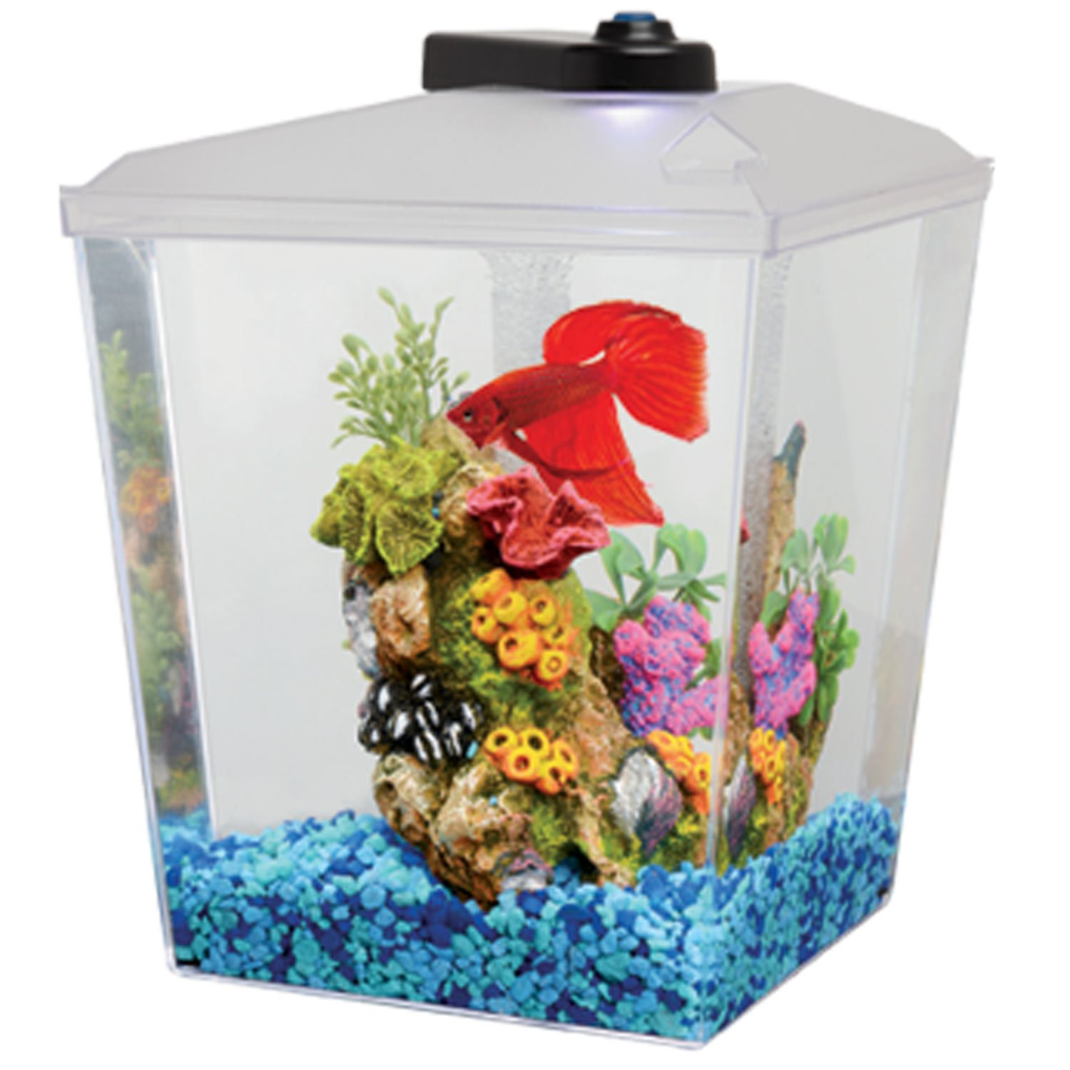 5 gallon fish tank petco description specifications