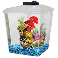 Petco 1 Gallon Corner Aquarium Kit