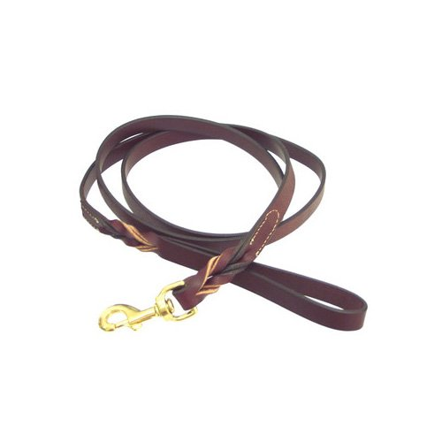 Petco Twisted Leather Lead in Mahogany