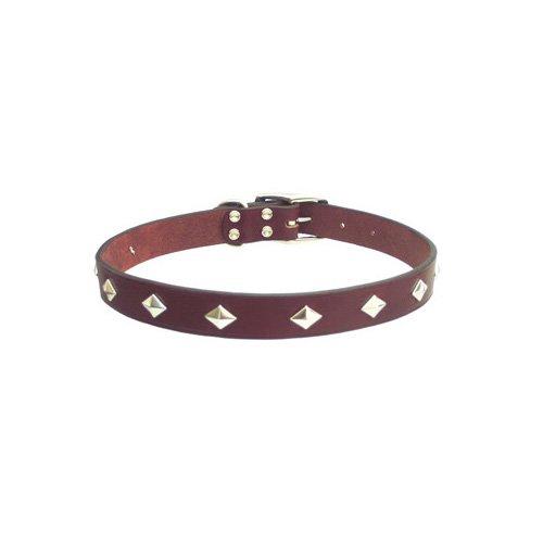Petco Diamond Stud Leather Collars in Mahogany