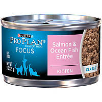 Pro Plan Focus Salmon & Oceanfish Canned Kitten Food