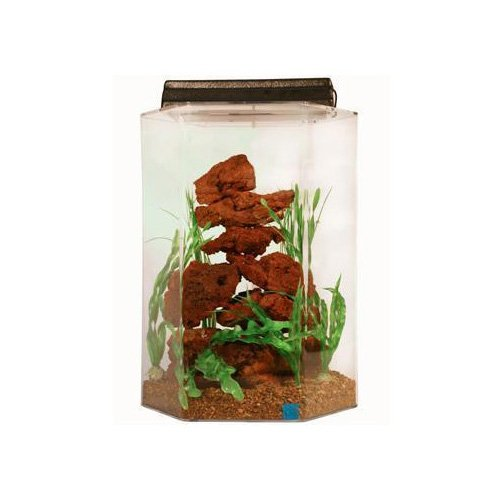 SeaClear Deluxe Hexagon 15 Gallon Aquarium Combos in Clear