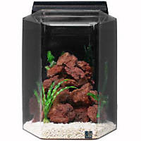 SeaClear Deluxe Hexagon 20 Gallon Aquarium Combos in Black