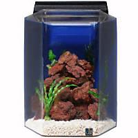 SeaClear Deluxe Hexagon 20 Gallon Aquarium Combos in Blue