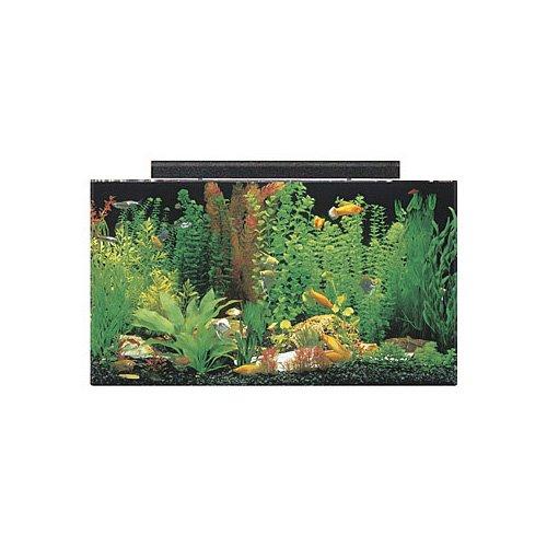 Seaclear rectangular 50 gallon aquarium combos in clear for Rectangle fish tank