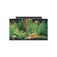 SeaClear Rectangular 50 Gallon Aquarium Combos in Clear