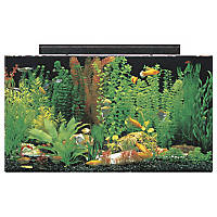 SeaClear Rectangular 50 Gallon Aquarium Combos