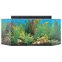 SeaClear System II 26 Gallon Aquarium Combos in Black