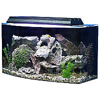 SeaClear Bowfront 36 Gallon Aquarium Combos in Clear