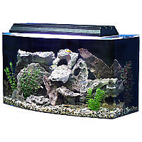 SeaClear Bowfront 36 Gallon Aquarium Combos in Black