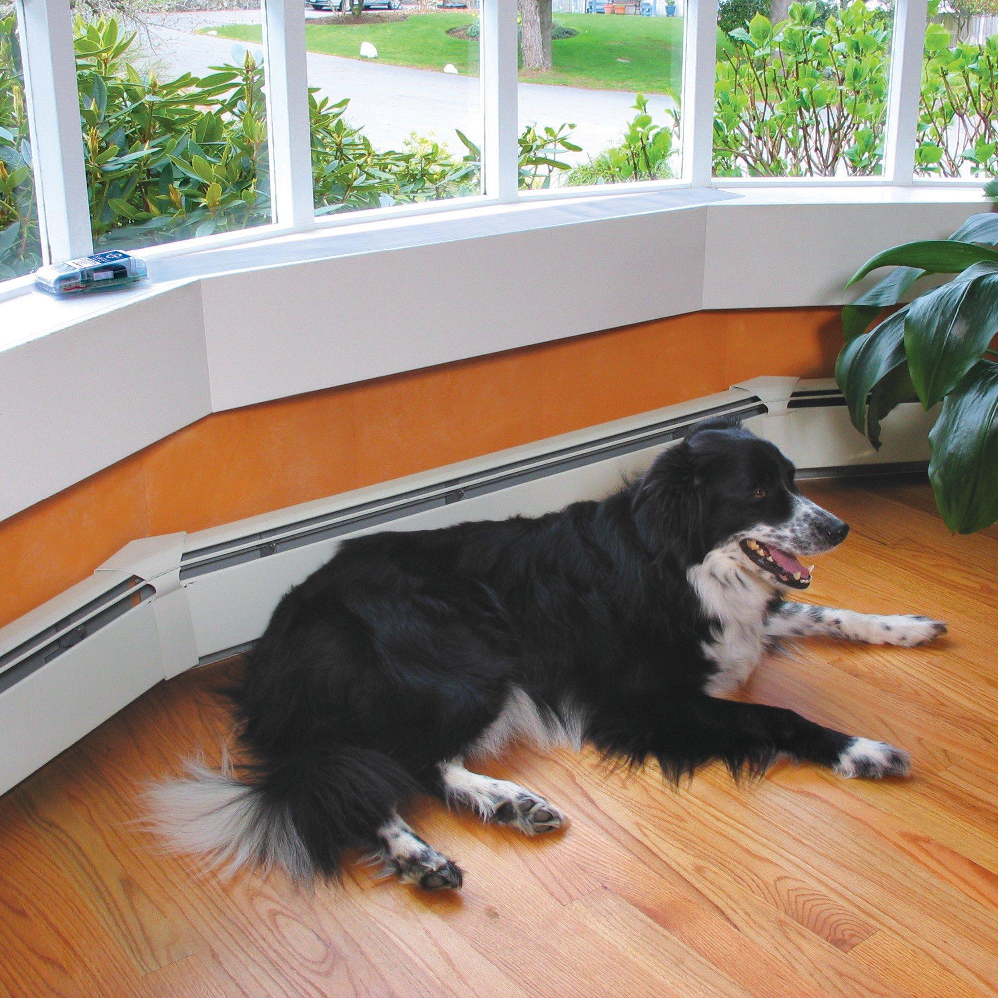 PetSafe ScatMat Indoor Pet Training Mat
