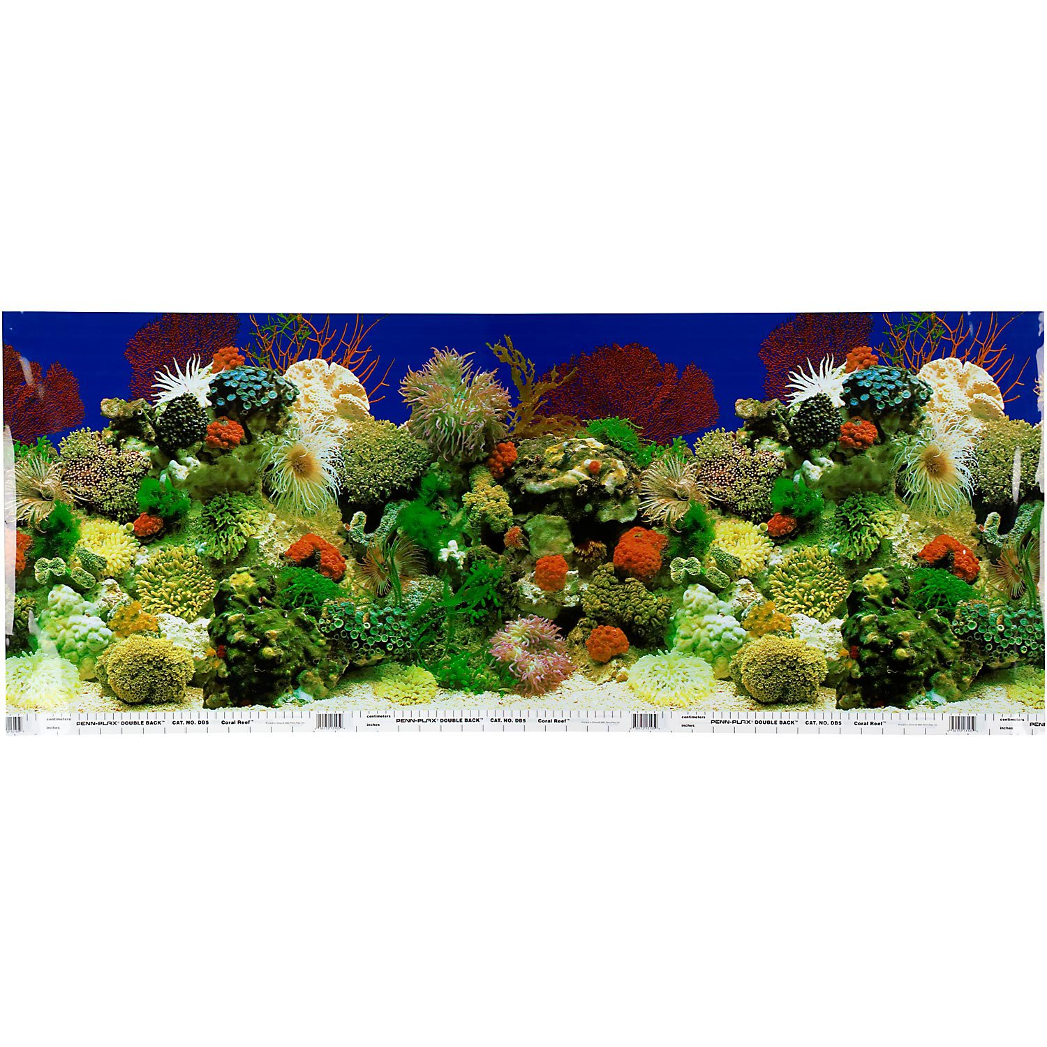 Petco Double Sided Amazon Aquarium Background
