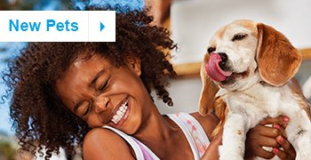 New Pet Resources