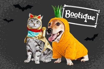 Buy One, Get One 50% off Bootique Halloween Collection - Discounted item must be of equal or lesser value - Shop Now