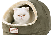 Up to 50% off - Cat Beds