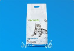 Up to 30% off Cat Litter - Shop Now