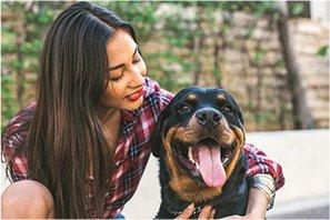 Pet Services Pet Sitting Top Notch Sitters