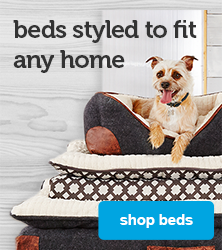 beds styled to fit any home - shop beds