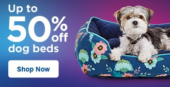 Up to 50% off Dog Beds - Shop Now