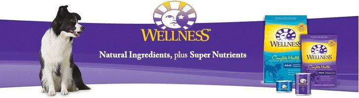 Wellness - Complete Health Dog