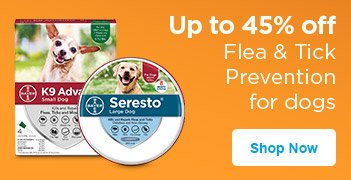 Up to 45% off Flea & Tick Prevention for Dogs - Shop Now