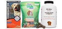 Dog Health & Wellness