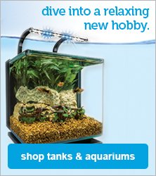 tanks & aquariums - shop now