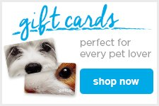 gift cards - perfect for every pet lover