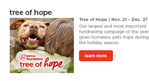 Tree of Hope - learn more