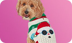 Holiday Categories - Dog Apparel