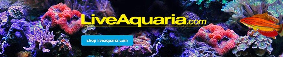 liveAquaria