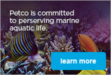 Petco's Commitment to the Environment- learn more
