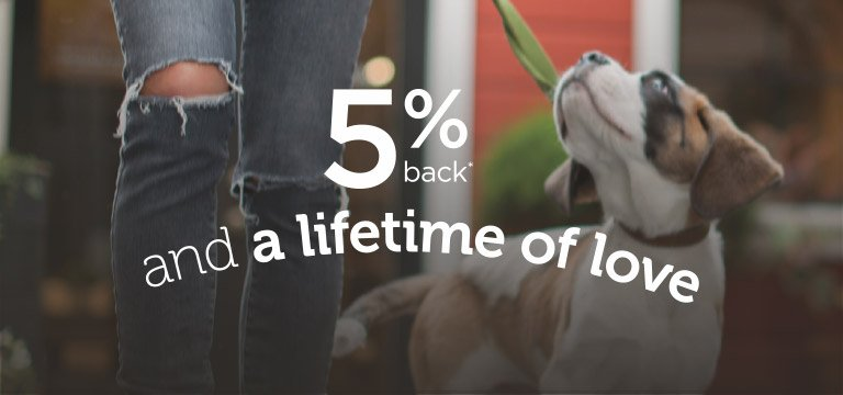 5% back and a lifetime of love