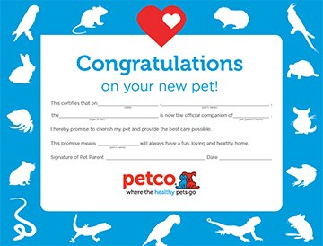 petco kids icon certificate