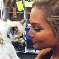 Jacksonville Humane Society - Daisy