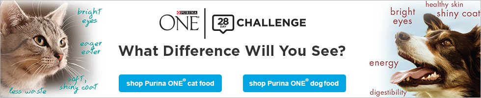 purina-28-day