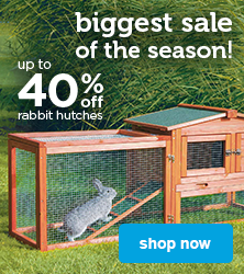 up to 40% off rabbit hutches - shop now