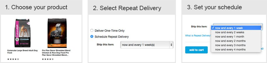 Repeat Delivery Process