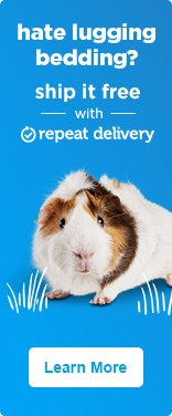 Hate lugging bedding? Ship it free with repeat delivery - learn more