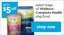 Wellness dog food - shop now
