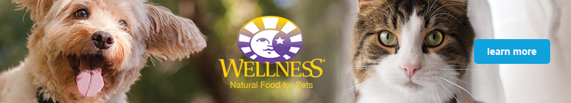 Wellness - learn more