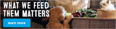 What We Feed Them Matters - learn more