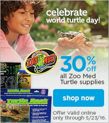 Celebrate World Turtle Day with 30% off all Zoo Med Turtle supplies - shop now
