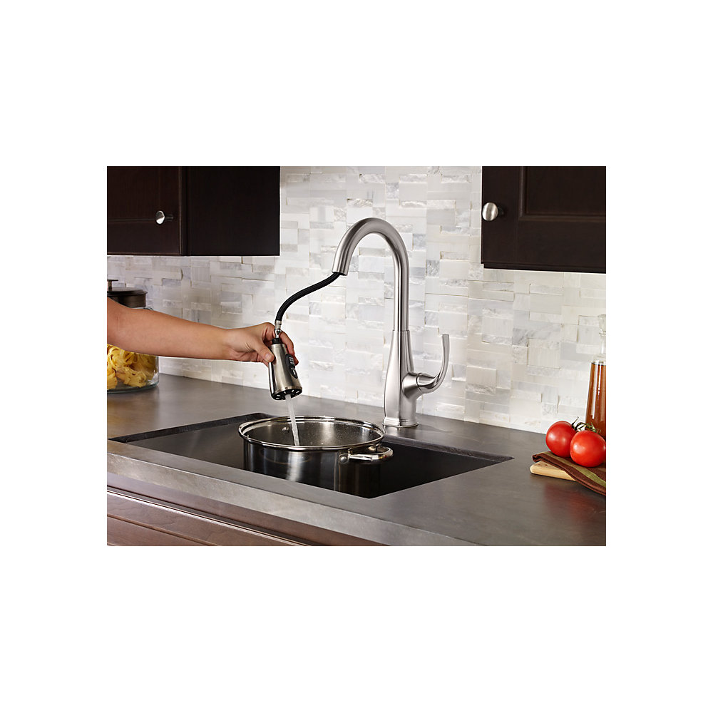 Pfister Selia Kitchen Faucet Stainless Steel Selia 1 Handle Pull Down Kitchen Faucet F 529